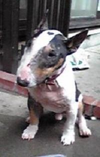 20086.jpg