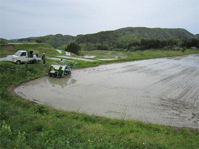 棚田の田植え