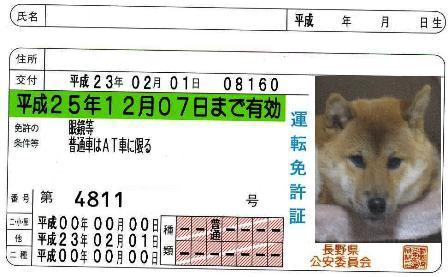 運転免許取得3