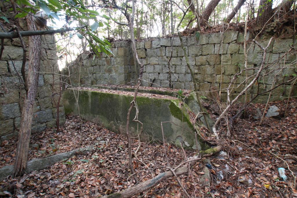 塔のそばの藪の中に残る、ケーブルカーの駅の遺構