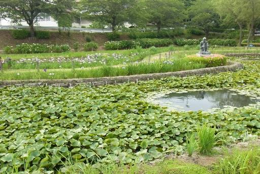 河童像と蓮池