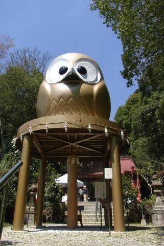 日本一の大フクロウ
