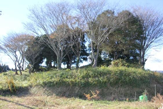 琵琶墓古墳