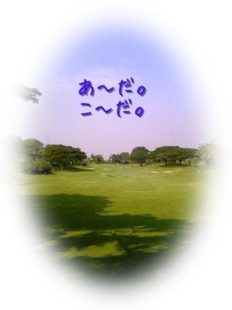 IMG-20110927-00652.jpg