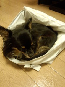 takayoのブログ
