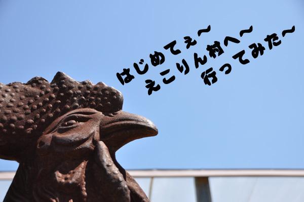 2010初えこりん