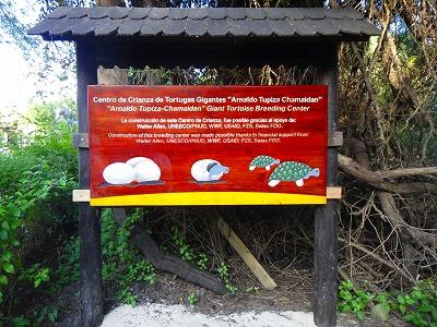 イザベラ島