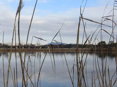 乙戸沼から冬の筑波山