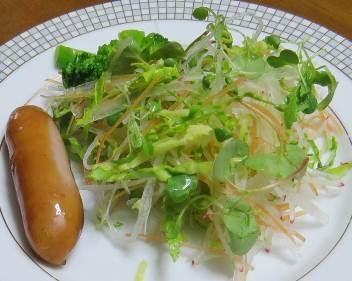 ハクランの生野菜サラダ