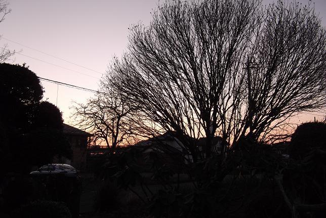 2012最後の夕日