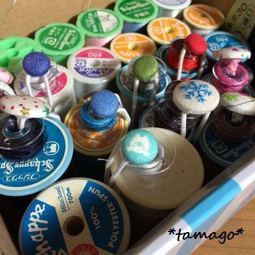 tamago_101.jpg
