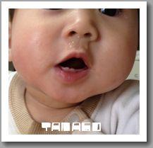 tamagotic_0134_20120130124058.jpg