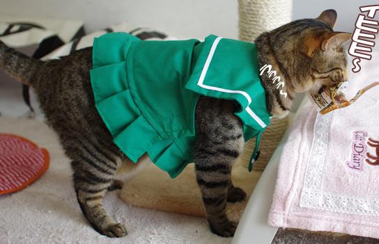 せっかくのセーラー服が可愛く見えない!コピー