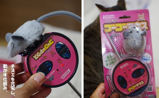 玩具3-20-02dd--dddddd定 1のコピー