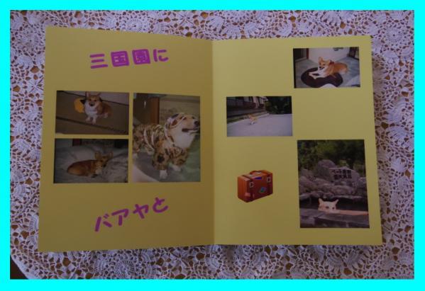 3_20120410155600.jpg