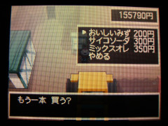10100903.jpg