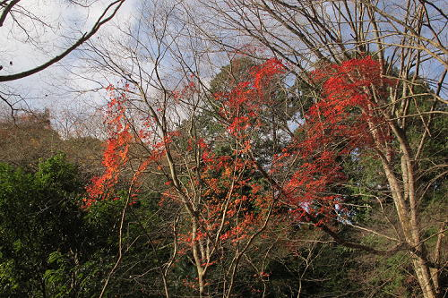 14_12_7_takami_isido (155)(1)