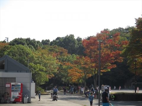 2014-10-19-07.jpg