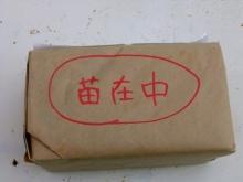 多肉保育園 園長日記