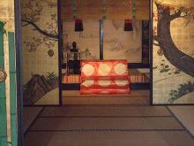 $タンポポライオンのブログ-京都