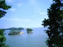 $タンポポライオンのブログ-三陸の海