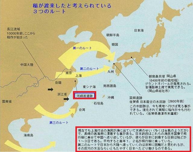 2014-11-24稲の伝来地図