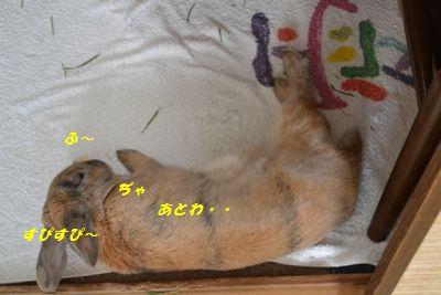 003_20130223112753.jpg