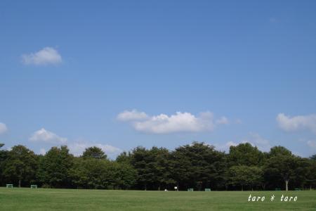 青葉の森公園1