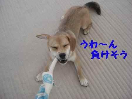 2010_0828_160949.jpg