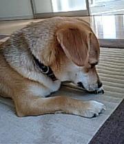yuuki_convert_20101107213648.jpg