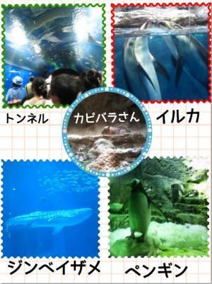 繧ュ繝」繝励メ繝」2_convert_20130724111826