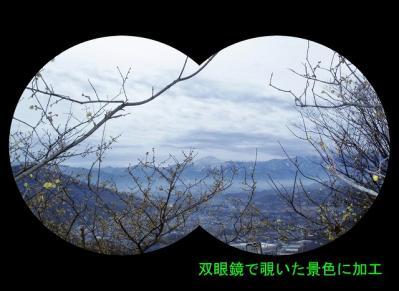 dDSCF0063-b.jpg