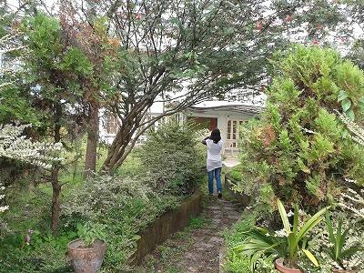 新しいクンデ・ハウスの庭