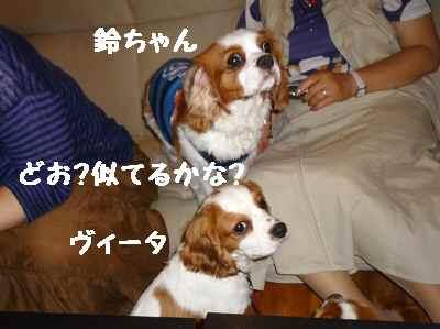 2011_0626_141704-P1100609.jpg