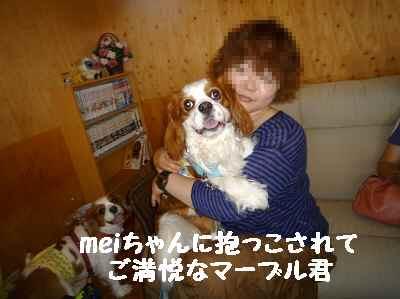 2011_0626_142451-P1100611.jpg