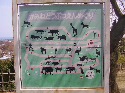 動物4-1