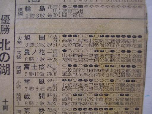 相撲23-8