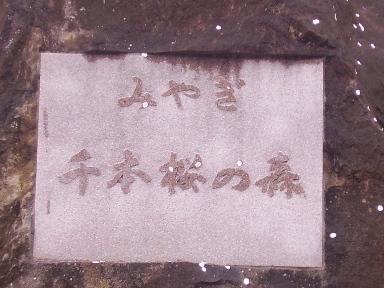 旅47-11