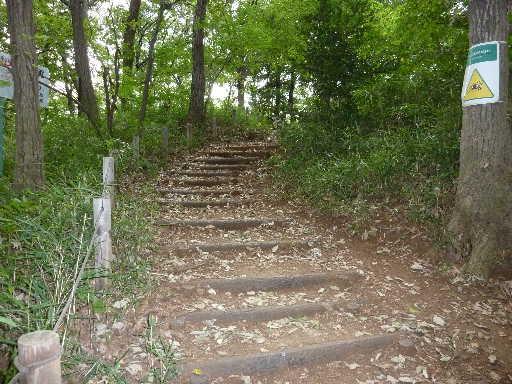 登山・街歩き11-1