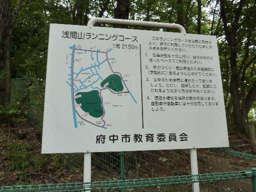 登山・街歩き11-21