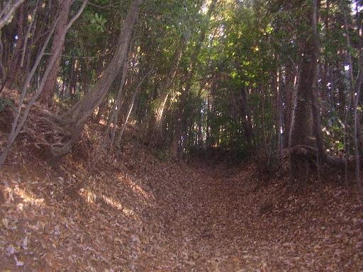 登山・街歩き17-11