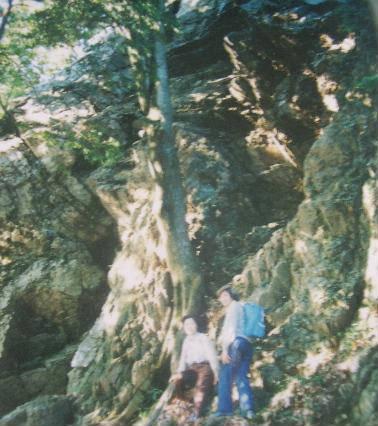 登山・街歩き25-5