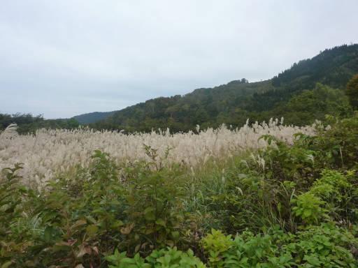 20101024・野々海峠まで03