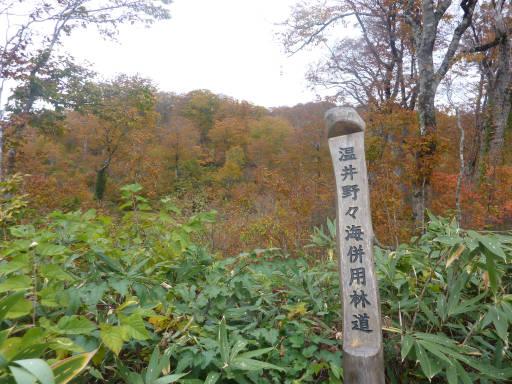 20101024・野々海高原01