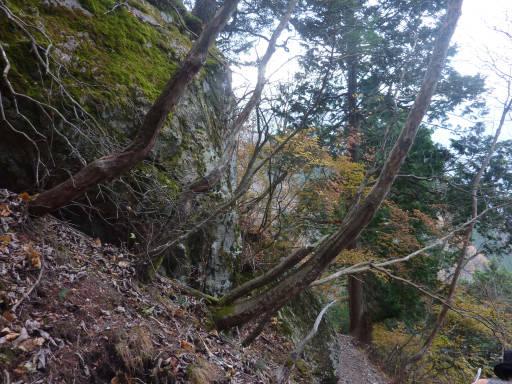 20101113・三峰妙法下山16