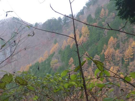 20101113・三峰妙法下山27