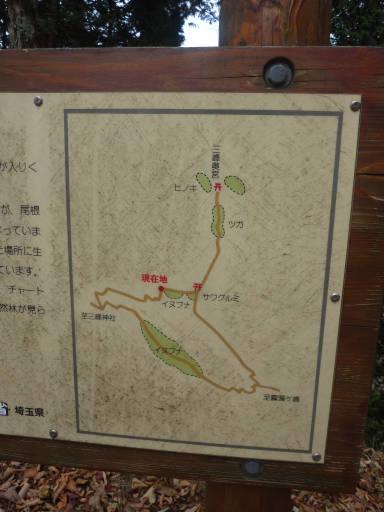 20101113・三峰妙法下山29