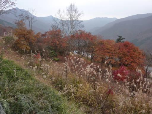 20101113・三峰妙法下山38