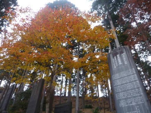 20101113・三峰神社04