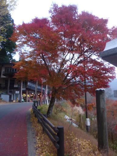 20101113・三峰神社37